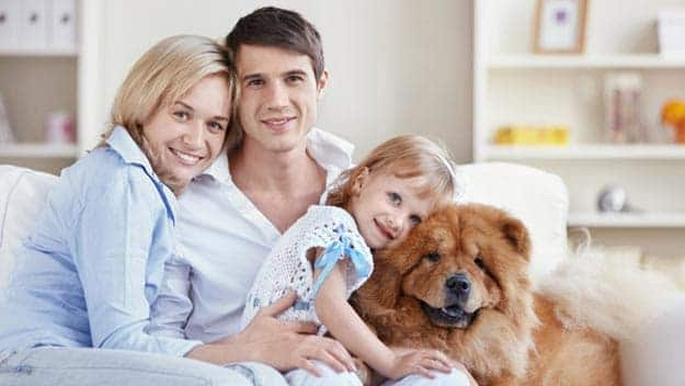 Wills & Trusts dog-young-family Direct Wills Runcorn